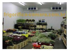 Câmara frigorifica para flores